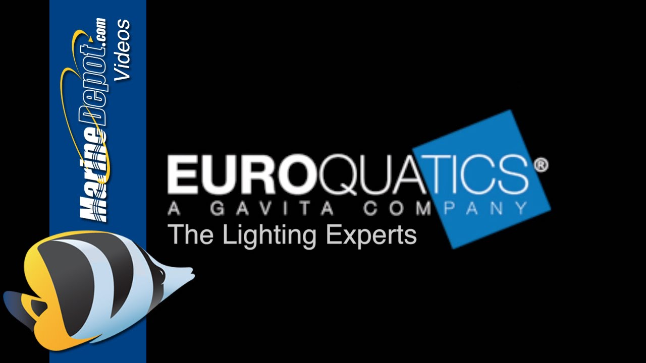 Euroquatics Angel LEDs - Advanced Features and Programming Thumbnail