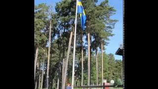 Sveriges Nationaldag Musikmix