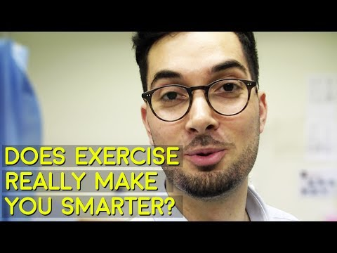 Can Exercise Really Make You Smarter?  Exercise Effects On The Hippocampus? Abraham The Pharmacist