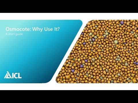 Why use Osmocote