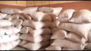 Plateforme d'innovation de Malanville -- Complexe moderne d'etuvage de riz