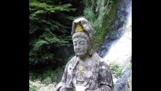 滝の観音は万治3年(1660)黄檗木庵の法子鉄巌が禅堂を建て,寛文7年(16...