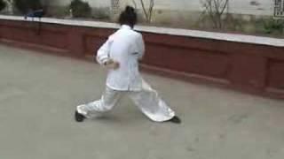 a kung fu master's amazing exercise