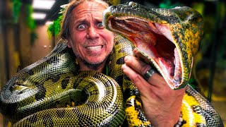 ANACONDA TRIES TO ATTACK ME!! | BRIAN BARCZYK
