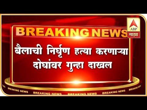 Indapur   FIR Against JCB Kills Bull   ABP Majha