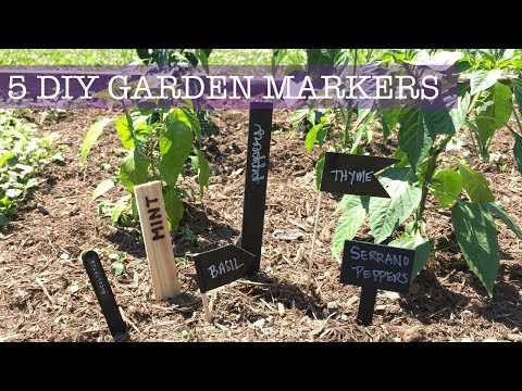 5 CHEAP & EASY | DIY Plant Markers/ Garden Labels