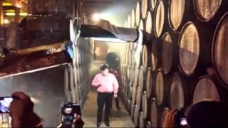 Alucine - El Coyote y su Banda Tierra Santa - Disco 2014
