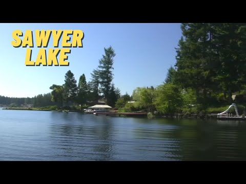 Sawyer Lake In King County