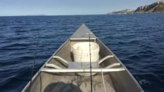 Grumman Canoe with Spring Creek Hydrodynamic Stabilisers and 2.5 HP Suzuki Outboard