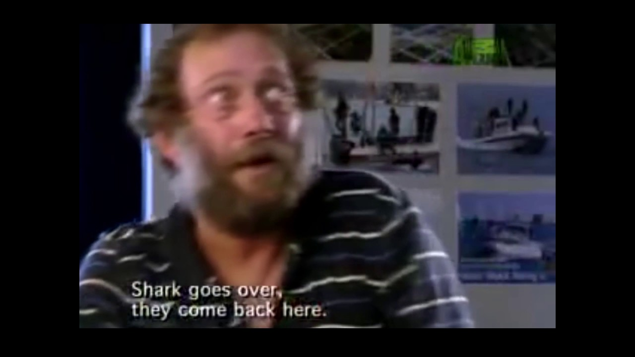 Download Top 5 Horrific Shark Attack Footage Caught On Tape 2016