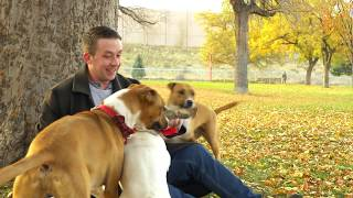 Doggie Dinners - The Locally-Sourced, Organic, Raw Dog Food