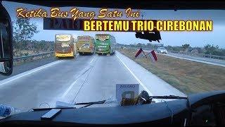 Ketika Dulure ATJ Bertemu Bus Cirebonan Ini ! Setia Negara, Sahabat, Luragung Jaya