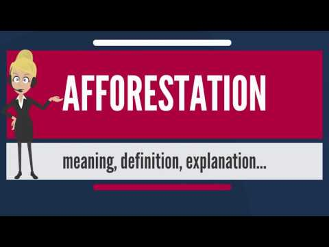 What Is AFFORESTATION? What Does AFFORESTATION Mean? AFFORESTATION Meaning & Explanation