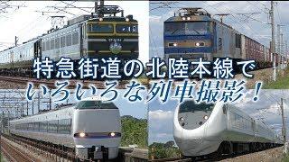 【特急街道!】北陸本線でいろいろな列車撮影!