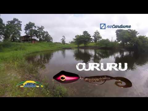 OCL CURURU - Teste e primeiras impressões