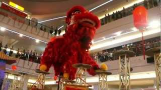 CNY 2013 ~ Acrobatic lion dance (跳高樁舞獅 Múa Lân) by Khuan Loke @ Tropicana City Mall