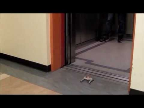 Watch A 3-D Printed Robot Slide Under Doors
