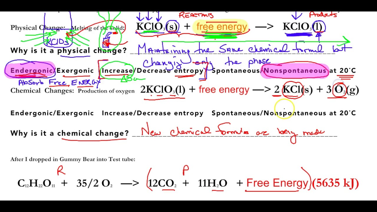 Uncategorized Entropy Worksheet ap biology entropy and free energy worksheet review youtube review