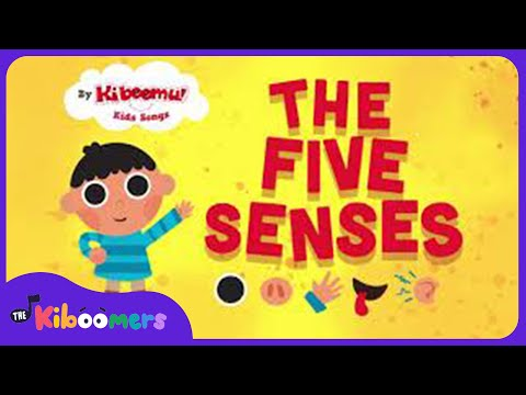 Five Senses Song | Song for Kids | The Kiboomers