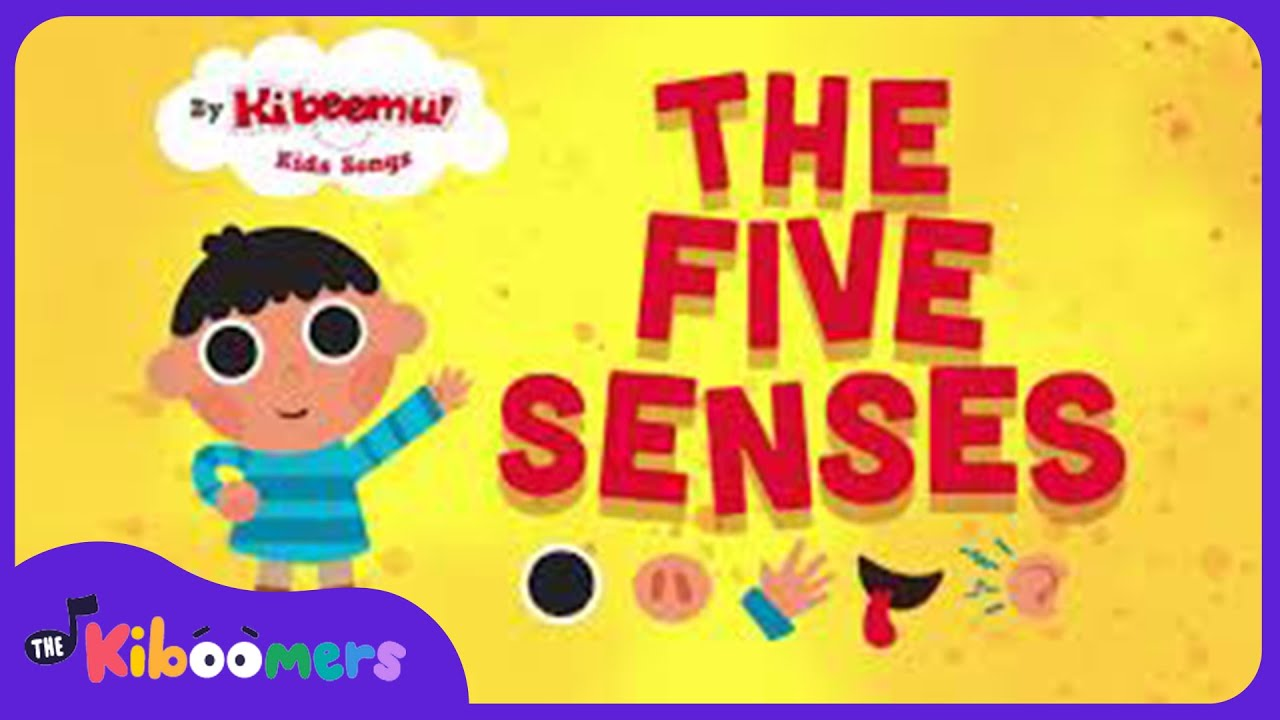 Five Senses Song Song For Kids The Kiboomers
