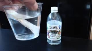 Shells on Acid Demonstration