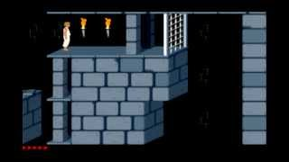 Prince of persia 1989 new custom level pack