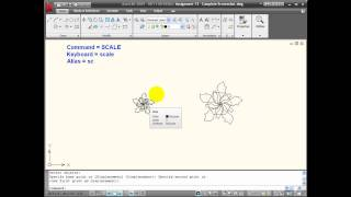 Autocad Tutorials - Using The Scale Command
