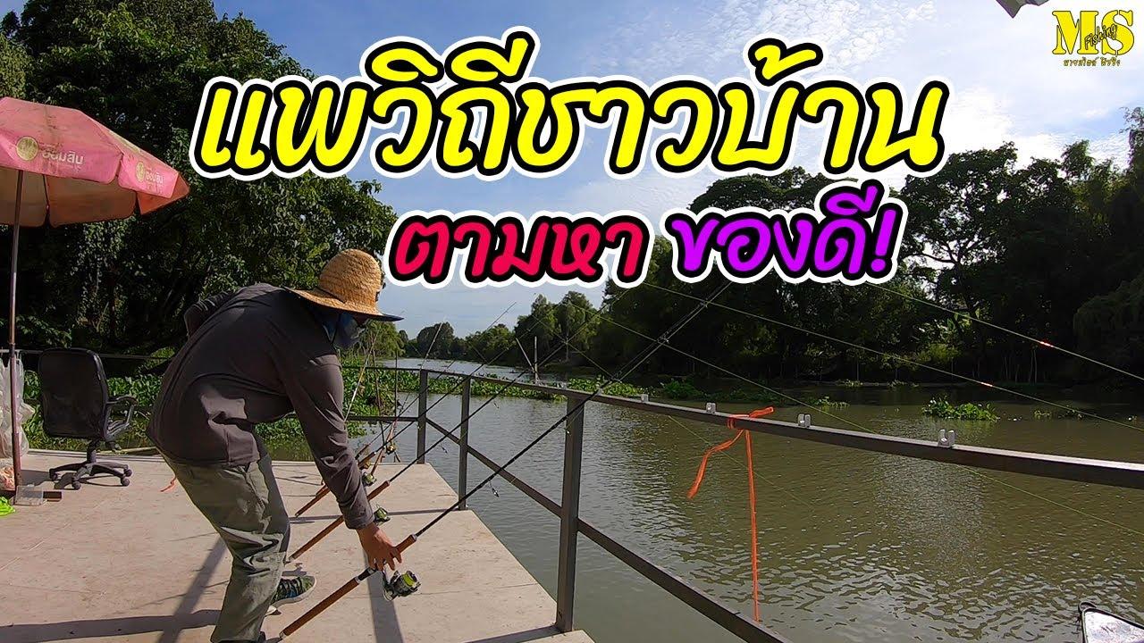 ตกปลาหน้าดินแม่น้ำลพบุรี ตามหาของดีที่แพวิถีชาวบ้าน [ EP.21]