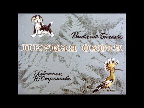 Диафильм Виталий Бианки - Первая охота