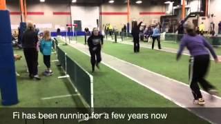 Flyball, Dog Training St. Cloud Mn, Dog Training Brainerd Mn