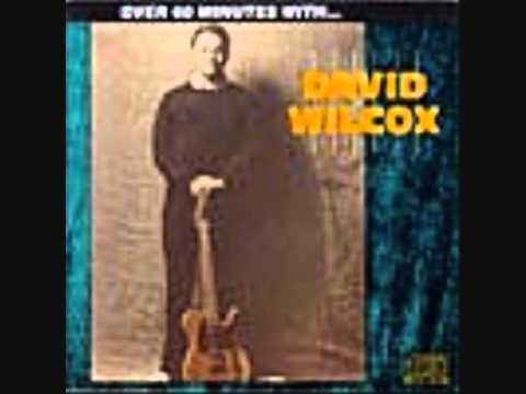 David Wilcox - Shake It Baby