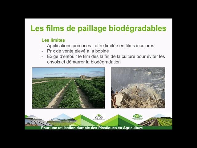 Les films de paillage biodégradable pour l'agriculture et de leurs applications