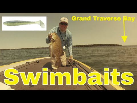Swimbait Smallmouth Bass Grand Traverse Bay Michigan
