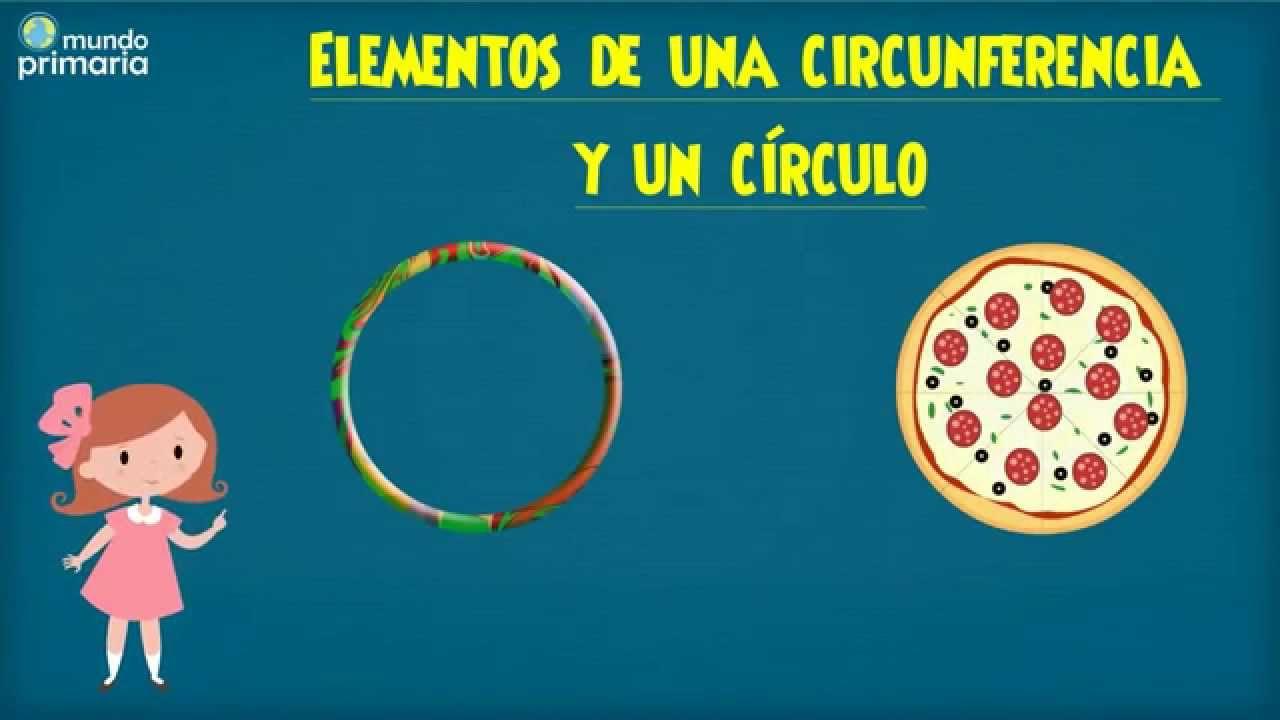 Elementos de la circunferencia y círculo para niños - YouTube