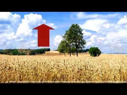Klimaverträgliche Landwirtschaft (Oliver Einsle)
