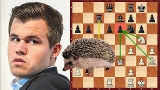 Шахматы. Магнус Карлсен. Английский ЁЖ на службе у Чемпиона Мира!