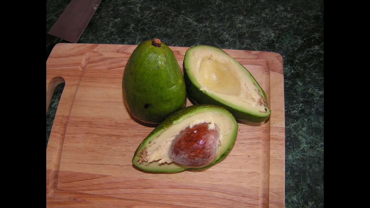 what are avocados good for in your body