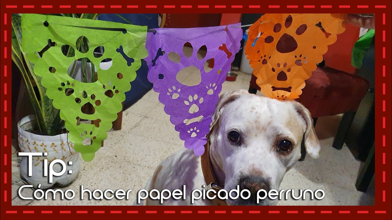 Tip: Cómo hacer papel picado con temática de perros!