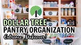 DOLLAR TREE PANTRY ORGANIZATION | EXTREME CLEAN & ORGANIZE WITH ME | Amy Darley