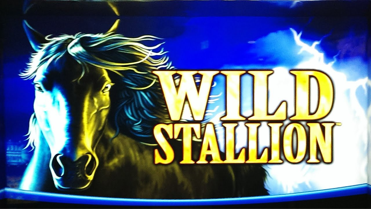 stallion slot machine