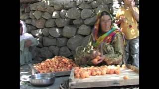 Mountain Fruit Company - Hunza - Organic Food ~ 2011