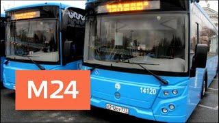 видео В Дубае запустили первый трамвай для туристов – The Dubai Trolley