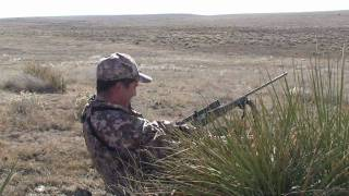 Coyote Hunting -Predator Hunting - Bucking The Odds 22