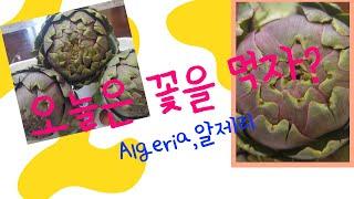 """꽃을 먹는다, 알제리 전통 음식""""카르누운"""" Algeri…"""