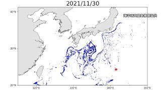 沖縄に流れ着いた軽石、この後どこへ 「黒潮に乗り…」スパコン解析