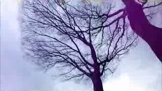 作業所「夢屋」ある風の強い日の風景