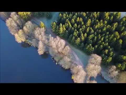 Alders Farm Fishery  -  Oak Lake