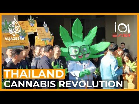 Thailand's Cannabis Revolution | 101 East
