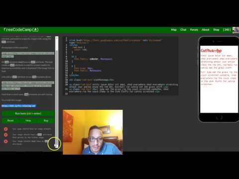 Add Images To Your Website, FreeCodeCamp Review Html & Css, Lesson 16