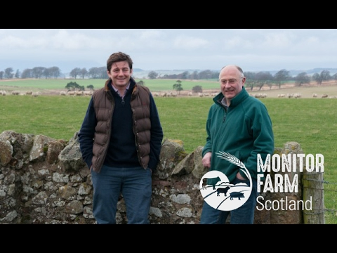 Lothians Monitor Farm